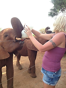 On safari with PD Tours_4