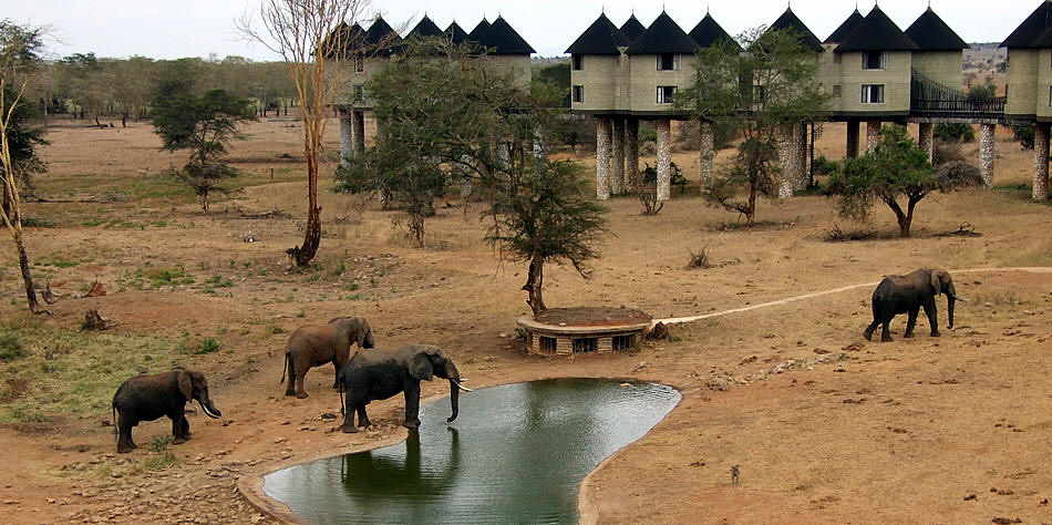 Salt Lick Game Lodge
